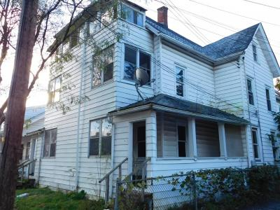 Binghamton Multi Family Home For Sale: 12 Green Street