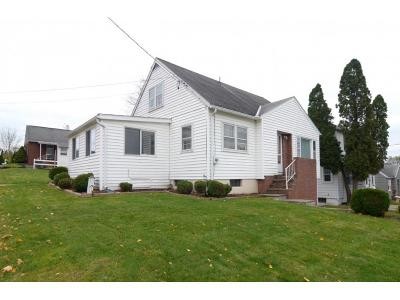 Binghamton Single Family Home For Sale: 48 Riverview Avenue