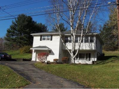 Binghamton Single Family Home For Sale: 114 Lewis Rd