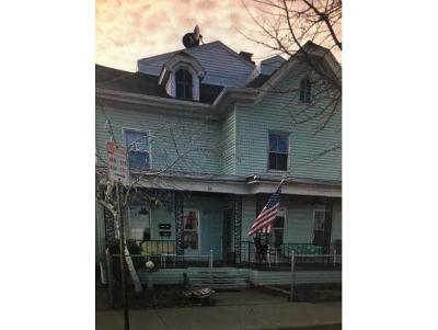 Binghamton Multi Family Home For Sale: 58 Pine Street