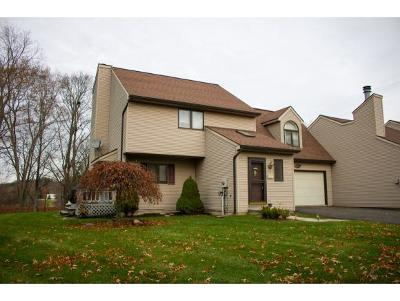 Vestal NY Single Family Home For Sale: $187,500