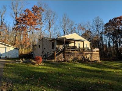 Endicott NY Single Family Home For Sale: $195,000