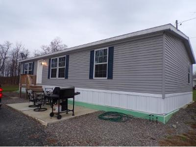 Nichols Single Family Home For Sale: 223 Depot Rd