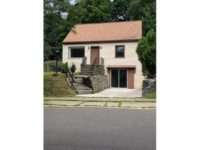 Binghamton Single Family Home For Sale: 23 Nash Street