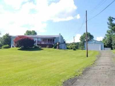 Owego Single Family Home For Sale: 3087 Day Hollow Road
