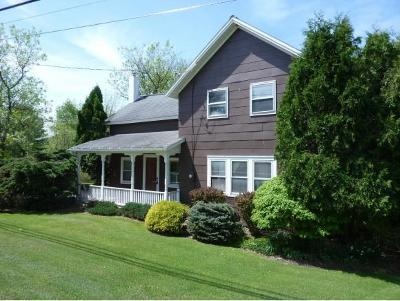 Vestal Single Family Home For Sale: 2876 Glenwood Road