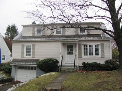 Binghamton Single Family Home For Sale: 1/4 Park Street