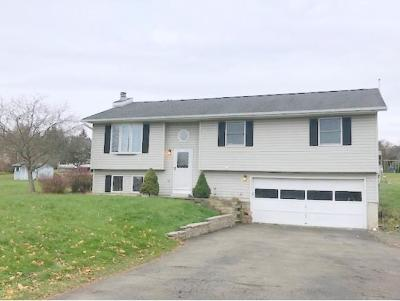 Apalachin Single Family Home For Sale: 139 Tara Lee Drive