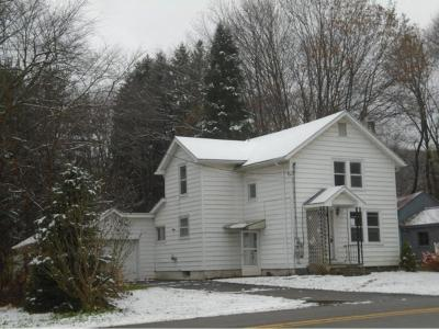 Binghamton Single Family Home For Sale: 67 Port Rd