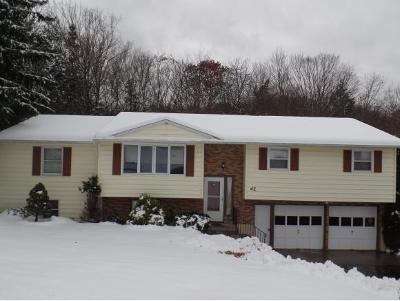 Apalachin Single Family Home For Sale: 42 Elmwood Dr