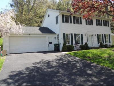 Vestal Single Family Home For Sale: 3136 Cortland Drive