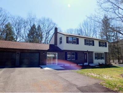 Vestal NY Single Family Home For Sale: $229,000