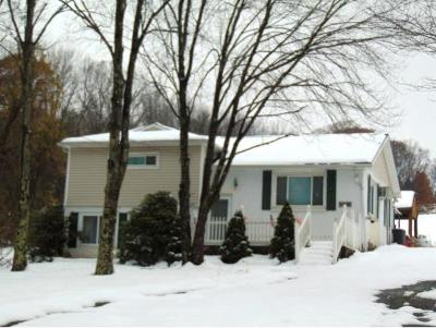 Apalachin Single Family Home For Sale: 685 Rhodes Road