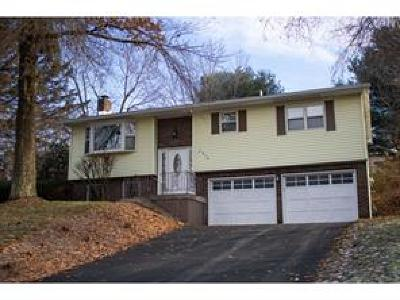 Binghamton NY Single Family Home For Sale: $174,900