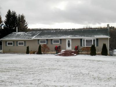 Endicott NY Single Family Home For Sale: $274,900