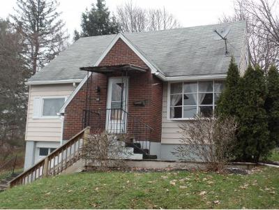 Binghamton Single Family Home For Sale: 15 Whiting St