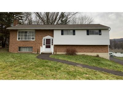 Vestal Single Family Home For Sale: 1524 Carnegie Drive