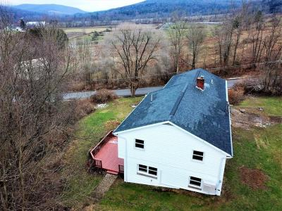 Apalachin Single Family Home For Sale: 220 Chestnut Ridge Rd
