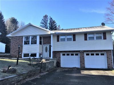 Broome County, Cayuga County, Chenango County, Cortland County, Delaware County, Tioga County, Tompkins County Single Family Home For Sale: 412 S. Jensen