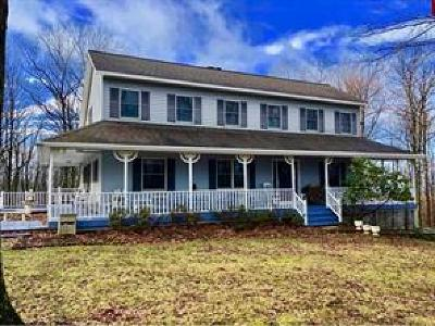 Vestal Single Family Home For Sale: 123 Ridge Road