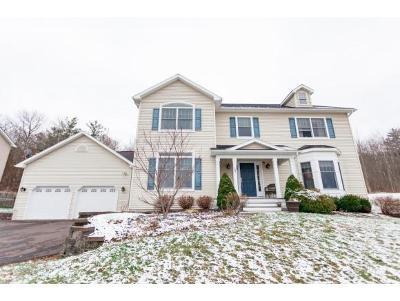 Vestal NY Single Family Home For Sale: $485,000