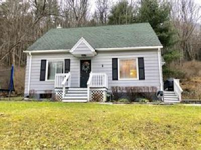 Vestal Single Family Home For Sale: 472 Echo Rd