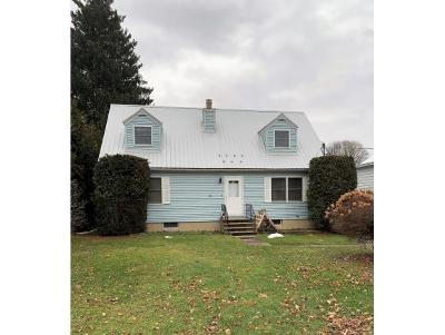 Newark Valley Single Family Home For Sale: 53 Elm Street