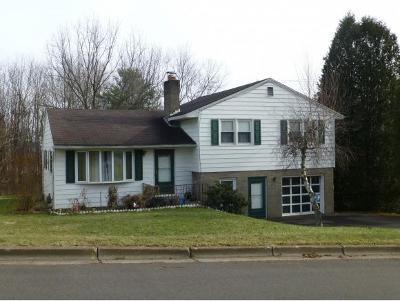 Endicott Single Family Home For Sale: 924 Oak Hill Avenue