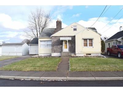 Johnson City Single Family Home For Sale: 71 Martin Avenue