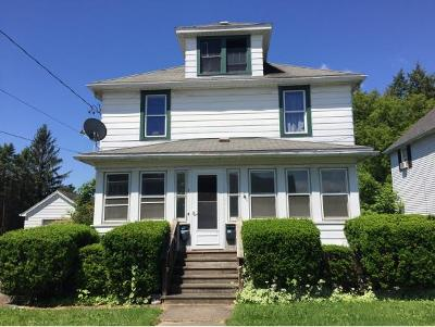 Johnson City Multi Family Home For Sale: 163 Broad St