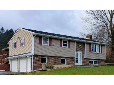 Binghamton Single Family Home For Sale: 1249 County Airport Road
