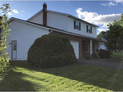 Endicott Single Family Home For Sale: 1165 Green Meadow Ln