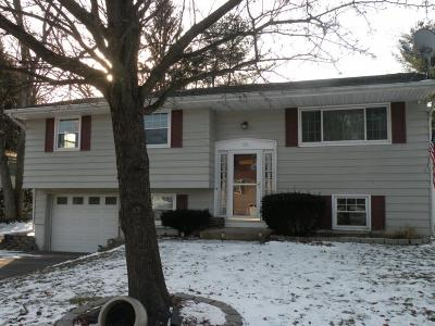 Binghamton Single Family Home For Sale: 28 Patch Road