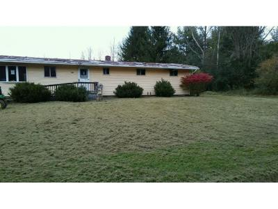 Vestal Single Family Home For Sale: 1232 Echo Rd