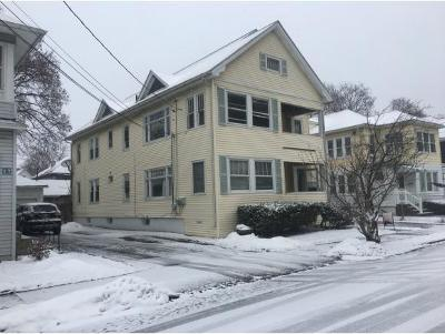 Binghamton Multi Family Home For Sale: 19 Macnamera Ave