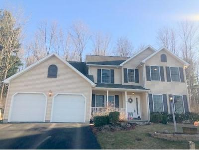 Owego Single Family Home For Sale: 8 Winey Wood Lane