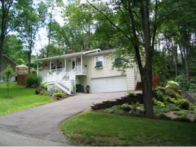 Vestal Single Family Home For Sale: 440 Jensen Road