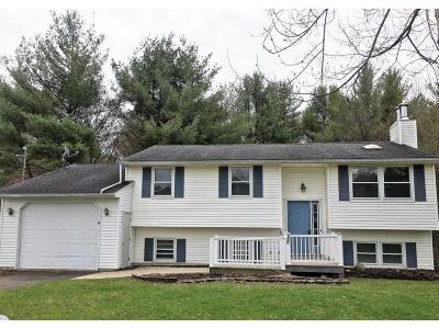 Vestal Single Family Home For Sale: 320 Horseshoe Lane