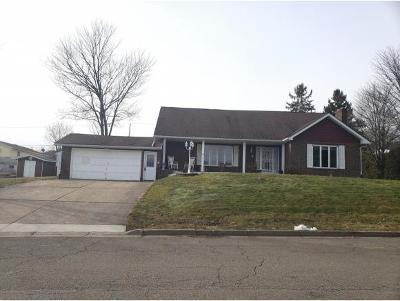 Endicott Single Family Home For Sale: 815 Squires Ave