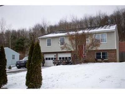 Broome County, Cayuga County, Chenango County, Cortland County, Delaware County, Tioga County, Tompkins County Single Family Home For Sale: 1139 County Airport Rd