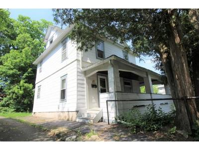 Binghamton Single Family Home For Sale: 97 Schubert Street