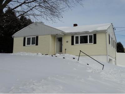 Endwell Single Family Home For Sale: 133 Hillside Terrace
