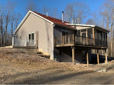 Chenango Single Family Home For Sale: 150 Ransom Rd