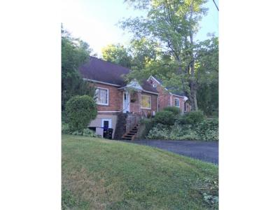 Vestal Single Family Home For Sale: 1129 Glenwood Rd