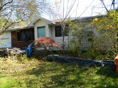 Apalachin Single Family Home For Sale: 41 Frederick Drive