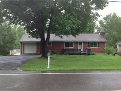 Vestal Single Family Home For Sale: 2042 Owego