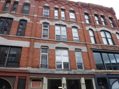 Binghamton Multi Family Home For Sale: 101 Court Street