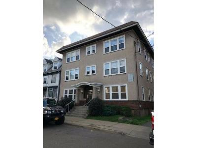 Binghamton Multi Family Home For Sale: 99 Murray Street