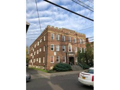 Binghamton Multi Family Home For Sale: 101 Murray Street