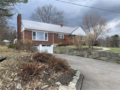 Vestal Single Family Home For Sale: 648 Jensen Road